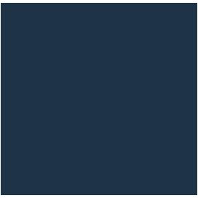 Governments Public Sector Pro Bono